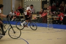 09.11.2013 - Radball Nationalmannschaft Drei-Nationen-Cup in Pfungen