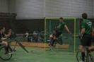 10.05.2014 - 5. Spieltag 1. Radball-Bundesliga in Kassel